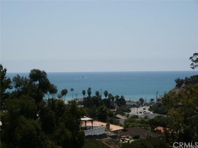 San Clemente Single Family Home For Sale: 408 Calle Vista Torito