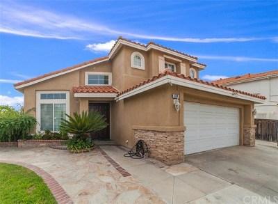 Santa Ana Single Family Home For Sale: 314 Summer Lane