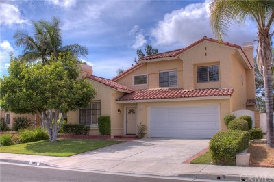 Mission Viejo Single Family Home For Sale: 21101 Foxtail