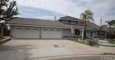 San Juan Capistrano Single Family Home For Sale: 27141 Paseo Del Este