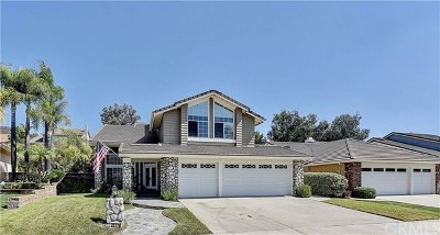Rancho Santa Margarita Single Family Home For Sale: 20776 Shadow Rock Lane