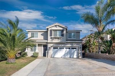 Lake Elsinore Single Family Home For Sale: 33142 Shoreline Drive