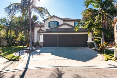 Aliso Viejo Single Family Home For Sale: 2 Blue Jay Drive