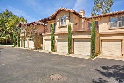 Rancho Santa Margarita Condo/Townhouse For Sale: 260 Pasto Rico