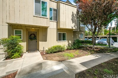 Lake Forest Single Family Home For Sale: 22273 Vista Verde Drive
