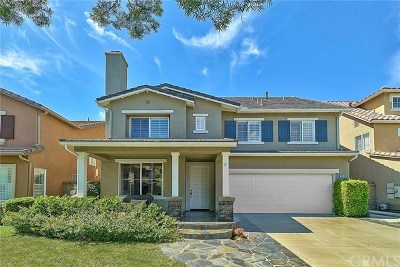 Orange County Single Family Home For Sale: 19 Solstice