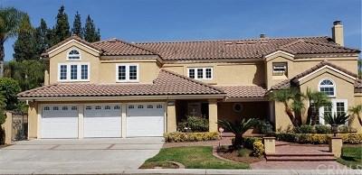 Laguna Hills Single Family Home For Sale: 27796 Hidden Trail Road