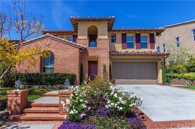 San Juan Capistrano Single Family Home For Sale: 26501 Via La Jolla