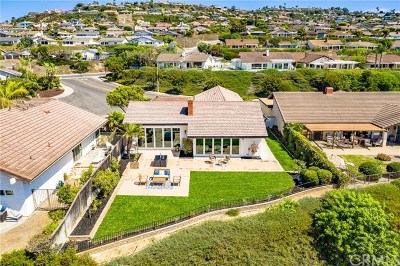 San Clemente Single Family Home For Sale: 625 Calle Miguel
