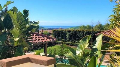 San Clemente Single Family Home For Sale: 18 Via Paulina