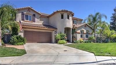 Temecula Single Family Home For Sale: 31986 Avenida Mallari