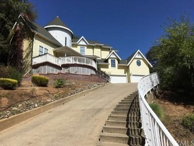 Folsom Single Family Home For Sale: 7240 Pine Grove Way