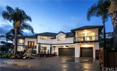San Clemente Single Family Home For Sale: 506 Via Delfin