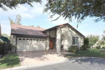 Mission Viejo Single Family Home For Sale: 27635 Via Granados
