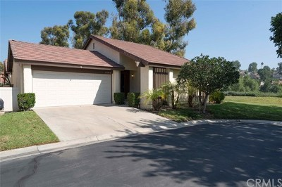 Mission Viejo Single Family Home For Sale: 27852 Via Granados