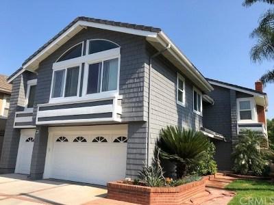 Irvine Single Family Home For Sale: 3 Puerto