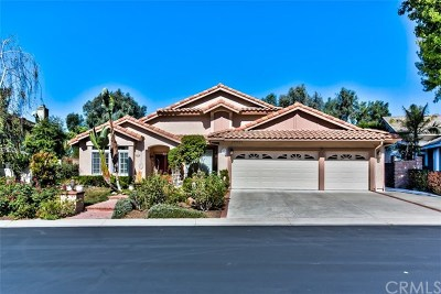 San Juan Capistrano Single Family Home For Sale: 28931 Via Hacienda