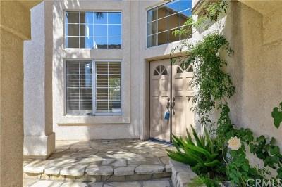Orange County Single Family Home For Sale: 19 Calabria Lane