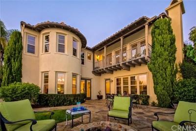 San Clemente Single Family Home For Sale: 2810 Canto Nubiado