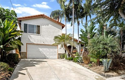 San Clemente Single Family Home For Sale: 103 Avenida San Pablo