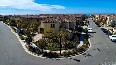 San Clemente Single Family Home For Sale: 216 Via Murcia