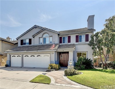Mission Viejo Single Family Home For Sale: 68 Springfield