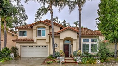 Laguna Niguel Single Family Home For Sale: 29381 Castle Road