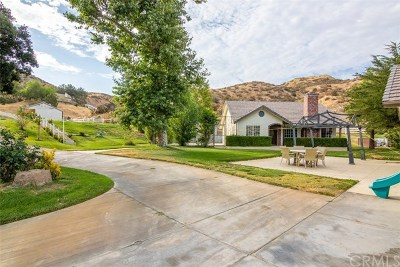 Canyon Country Single Family Home For Sale: 16925 Diver Street