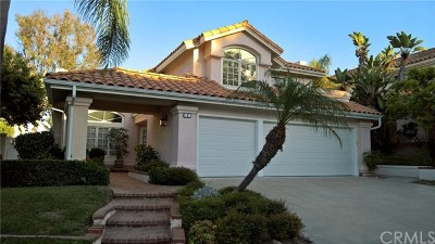 Laguna Niguel Single Family Home For Sale: 2 Fairmont