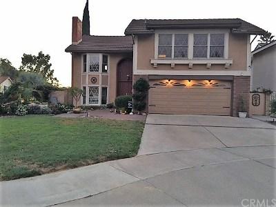 Lake Forest Single Family Home For Sale: 24756 Scott Lane