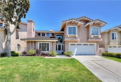 San Clemente Single Family Home For Sale: 3200 Calle Grande Vis