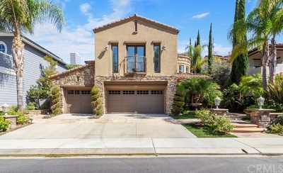 Coto de Caza Single Family Home For Sale: 8 Lake View Drive