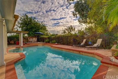 Mission Viejo Single Family Home For Sale: 24281 Via Madrugada
