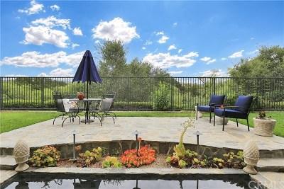 Coto De Caza Single Family Home For Sale: 64 Downfield Way
