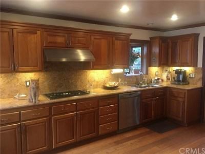 Newport Beach Single Family Home For Sale: 256 Ocean View Avenue