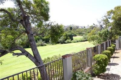 San Clemente Single Family Home For Sale: 417 Avenida Vaquero