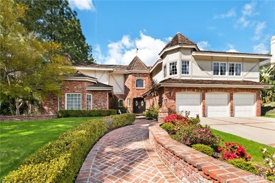 Laguna Hills Single Family Home For Sale: 25675 Dillon Road