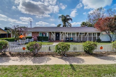 North Tustin Single Family Home For Sale: 13381 Hewes Avenue