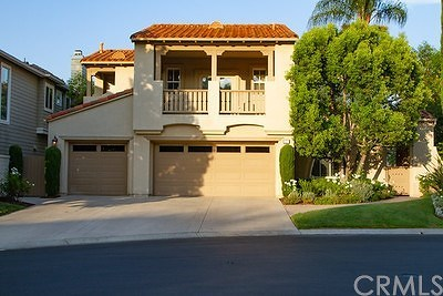 Coto De Caza Single Family Home For Sale: 22 Peony Way