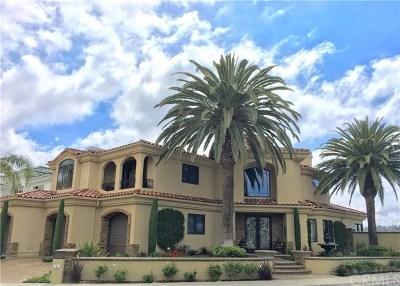 Laguna Niguel Single Family Home For Sale: 6 Santa Barbara Place