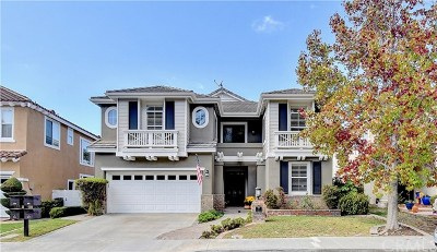 Aliso Viejo Single Family Home For Sale: 27 Sprucewood
