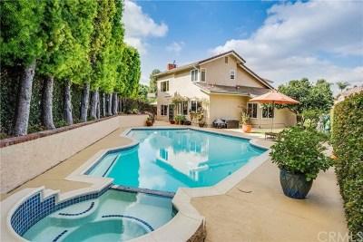 Irvine Single Family Home For Sale: 6 Dorchester E