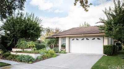 Laguna Hills Single Family Home For Sale: 25025 Sunset Place E
