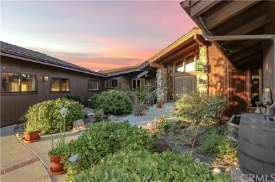 Fallbrook Single Family Home For Sale: 2493 Palo Vista Road