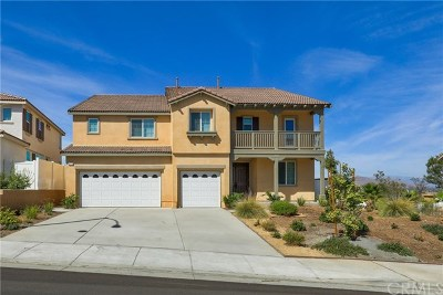 Moreno Valley Single Family Home For Sale: 15775 Turnberry Street