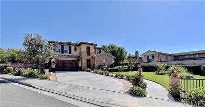 San Juan Capistrano Single Family Home For Sale: 26572 Paseo Callado