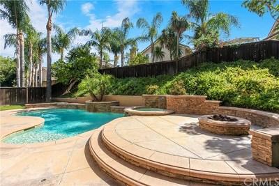 Rancho Santa Margarita Single Family Home For Sale: 26 Via Trompeta