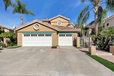 Mission Viejo Single Family Home For Sale: 27041 S Ridge Drive