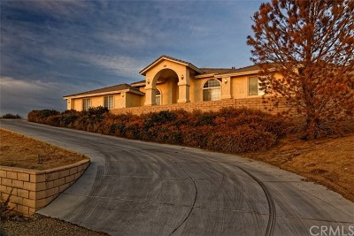 San Clemente Single Family Home For Sale: 2422 Via Mero