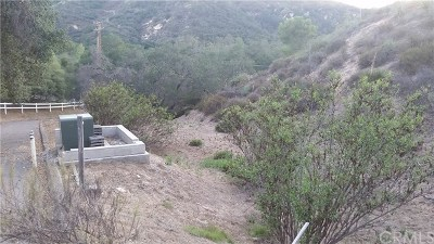 Trabuco Canyon Residential Lots & Land For Sale: 30291 Hunky Dory Lane